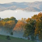 Moving to Asheville NC? Check this ARG Newsletter out for tips!