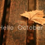 Find out what's happening! October in Asheville Newsletter