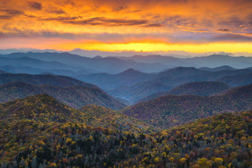 How Asheville NC real estate can ease your pain